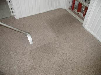 How to clean olefin Berber carpet