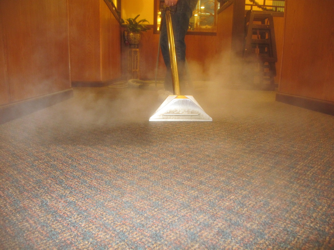 Learn how to professionally clean carpet with steam cleaning, encapsulation cleaning, bonnet cleaning and more